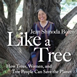 Like A Tree Audio Download